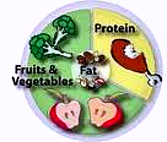 Heart healthy Diet Plan, Food portion Plate