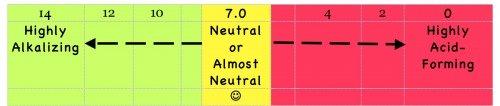 High Alkaline Foods Ph chart